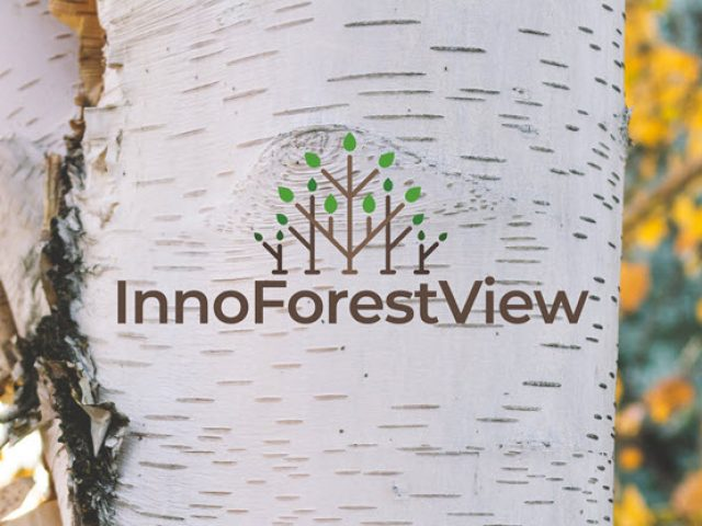 Innoforestview